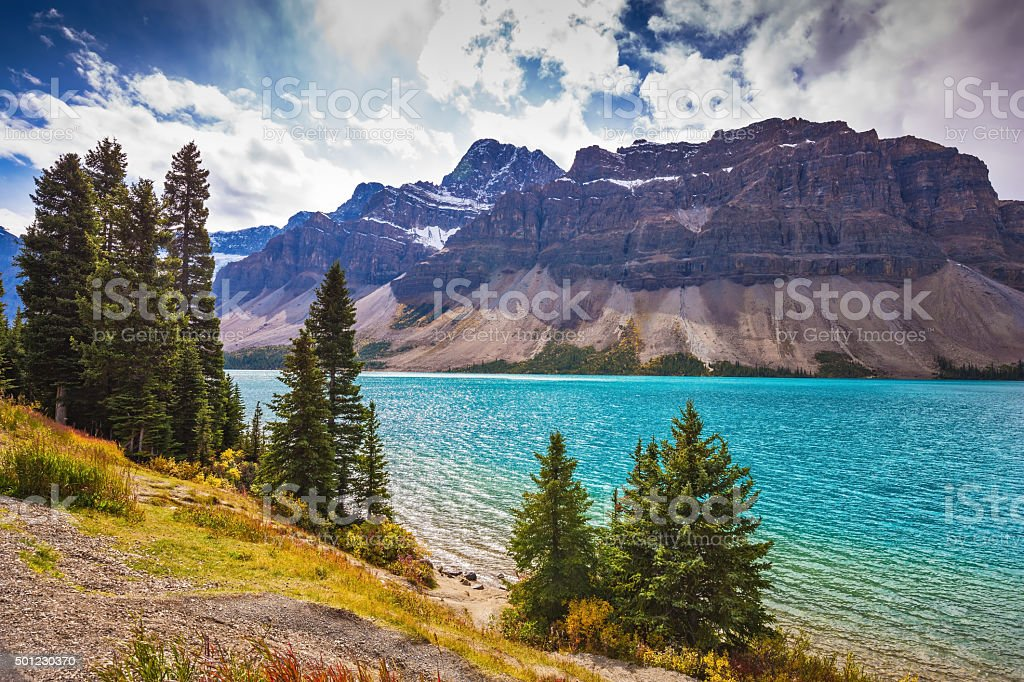 The glacial Bow Lake with green water stock photo