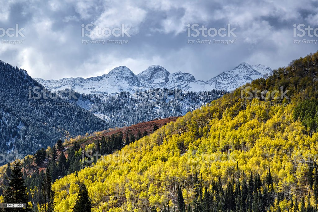 The Glow of Autumn Against Winter stock photo