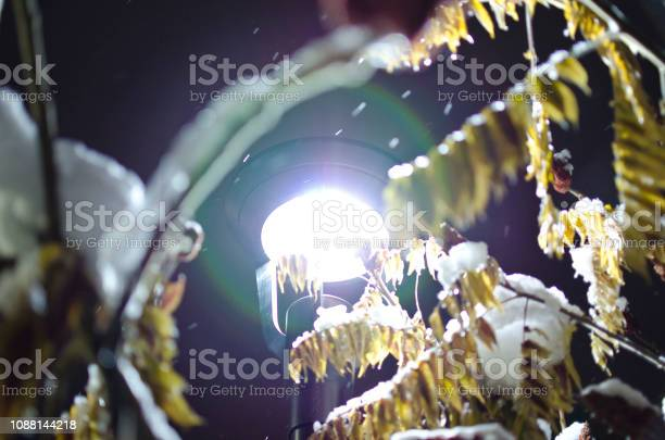 Photo of The glowing light in the snow storm