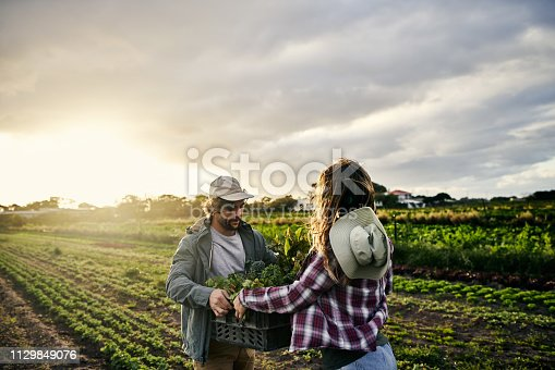 Shot of a young man and woman holding crates of freshly picked produce on a farm
