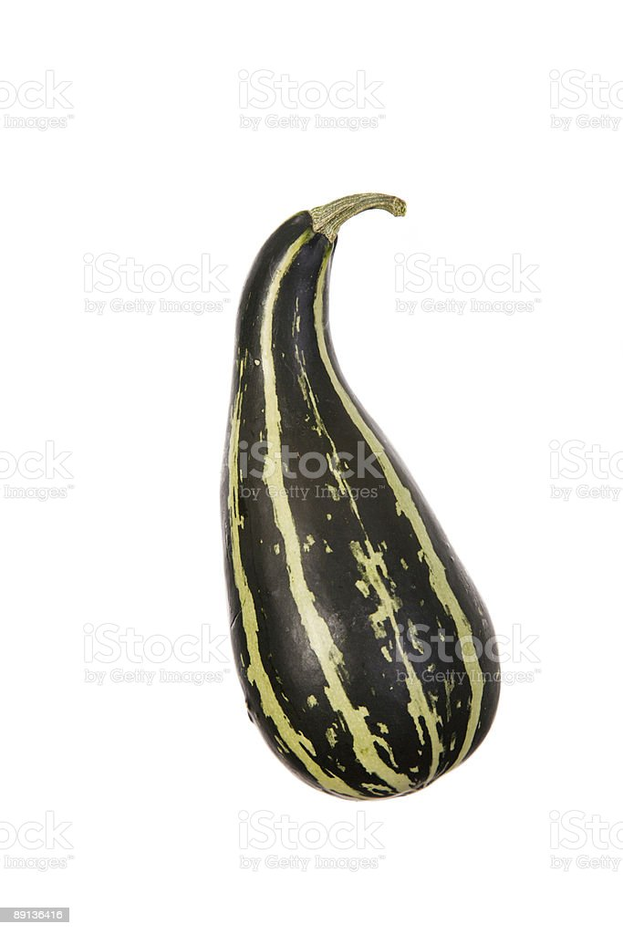 The Gourd royalty-free stock photo