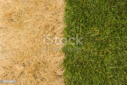 istock The Grass is Much Greener on Other Side 182235917
