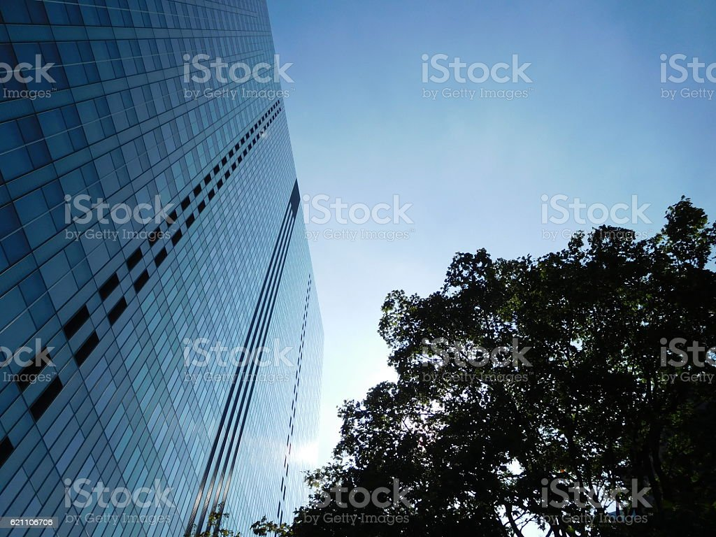 The grassed office building under the blue sky – Foto