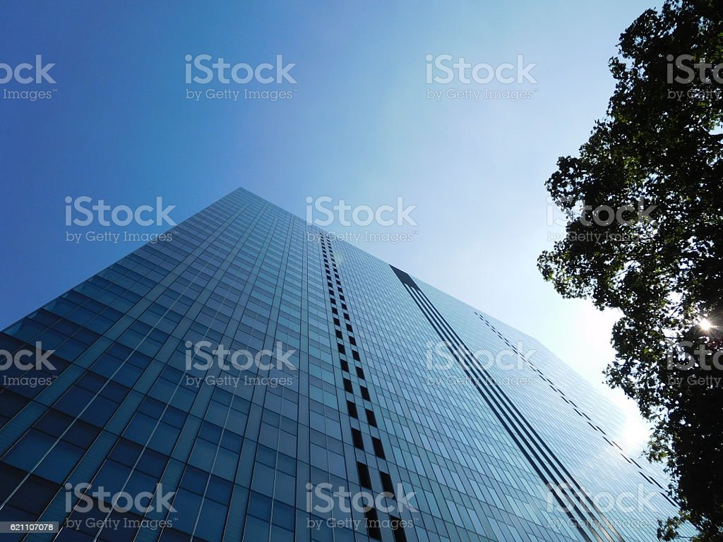 The grassed office building under the blue sky stock photo