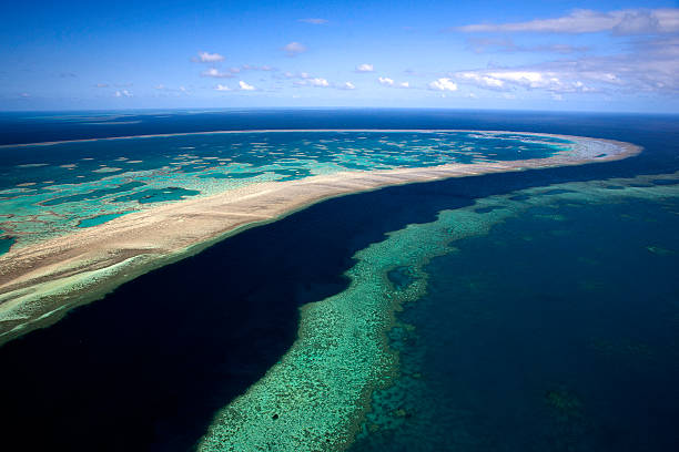the great barrier reef, queensland, australia - great barrier reef stock pictures, royalty-free photos & images