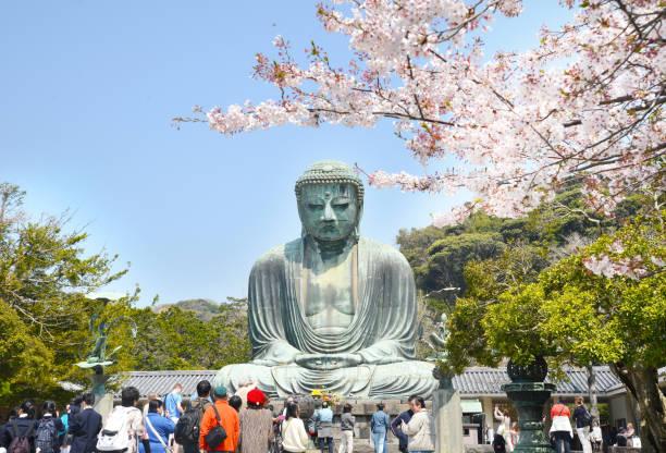 the great buddha of kamakura - prefektura kanagawa zdjęcia i obrazy z banku zdjęć