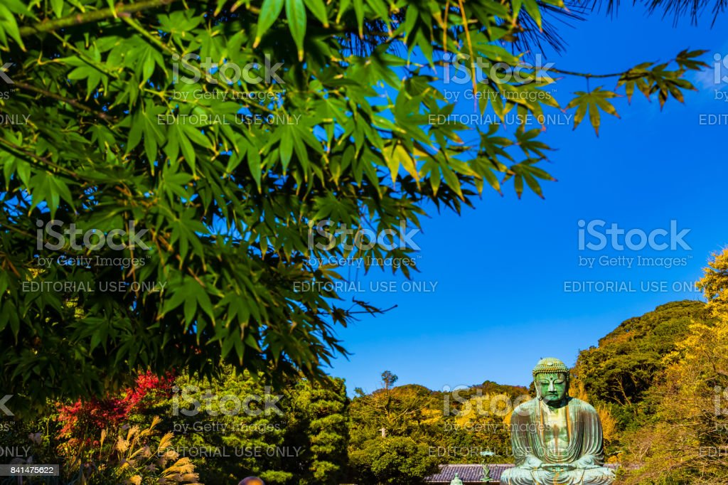 The Great Buddha stock photo