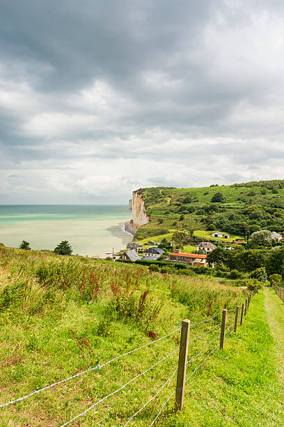 Les Grandes Dalles Normandy Famous Les Grandes Dalles near Fecamp in Normandy, France. dieppe france stock pictures, royalty-free photos & images