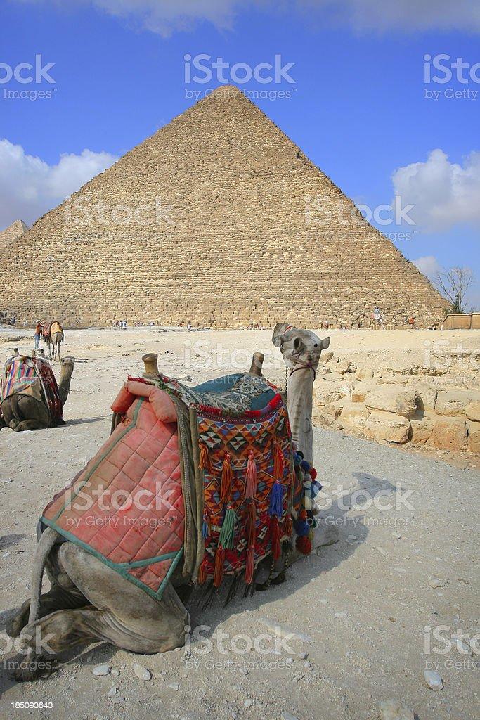 The Great Pyramid of Giza royalty-free stock photo