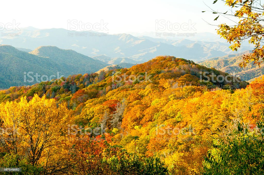 The Great Smoky Mountains bathed in autumn colors stock photo