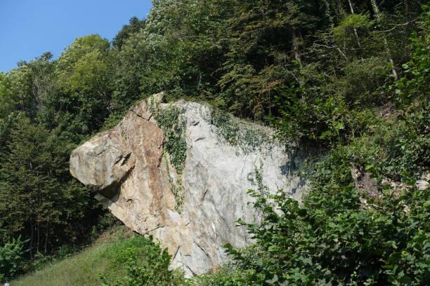 das große steinschwein - ebersberg stock-fotos und bilder