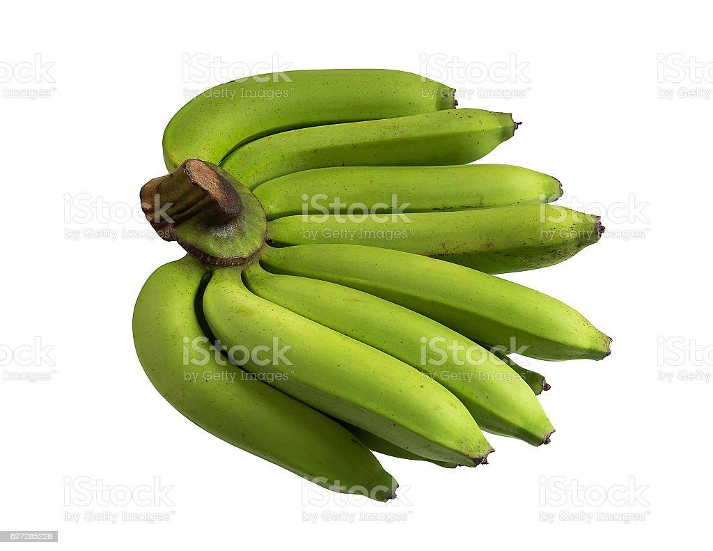 The green bananas in Thailand stock photo