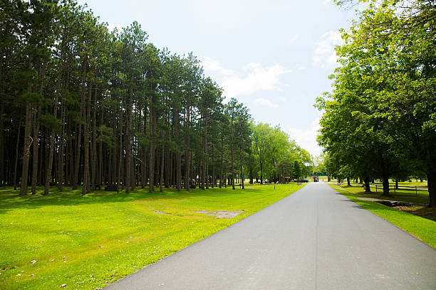 the green hall way stock photo