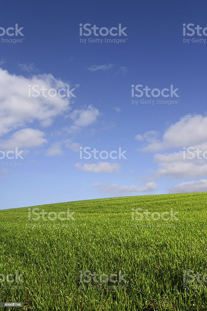 The green hill (vertical) royalty-free stock photo