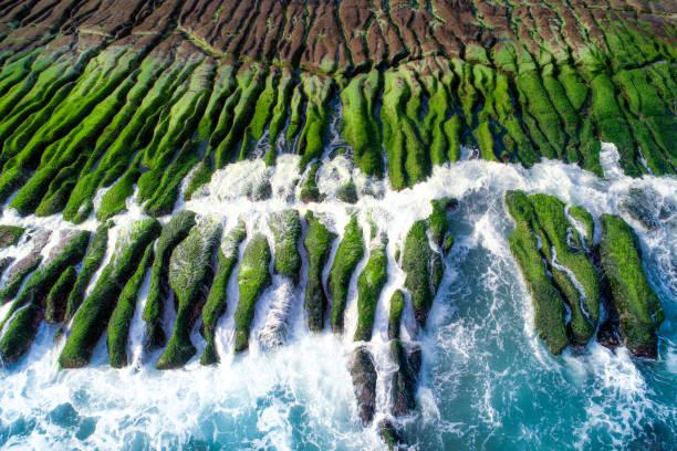 das grüne riff an einem sonnigen tag, taiwan, new taipei - insel taiwan stock-fotos und bilder