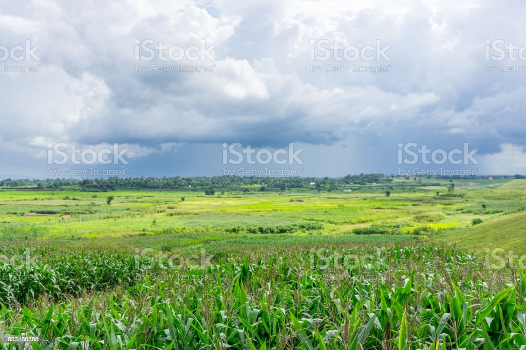 The green valley stock photo