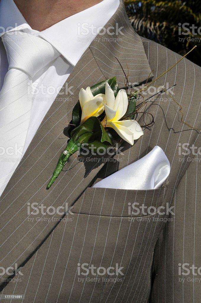 The groom royalty-free stock photo
