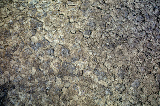 The ground has cracks in the top view for the background or graphic design with the concept of drought and death. Full Frame Photo Of Cracked Earth lake bed stock pictures, royalty-free photos & images