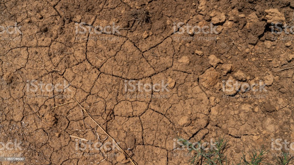 the ground is cracked by drought