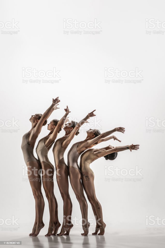 The Group Of Modern Ballet Dancers Contemporary Art Ballet Young Flexible  Athletic Men And Women Stock Photo - Download Image Now - iStock