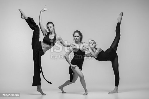 istock The group of modern ballet dancers 509291696