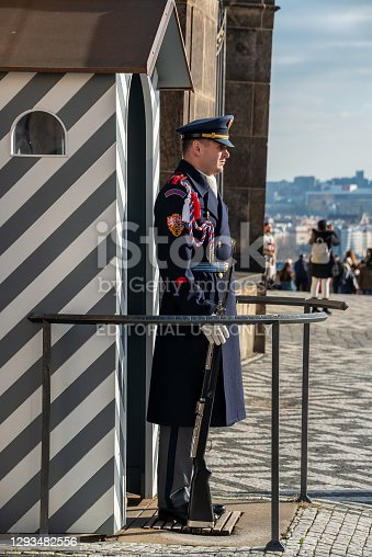 The guard of honor guards at the presidential Palace in Prague castle. In this special unit is six hundred soldiers.