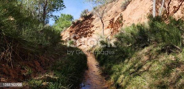 The Gulch Stream off Burr Trail Road, Grand Staircase-Escalante National Monument, Utah