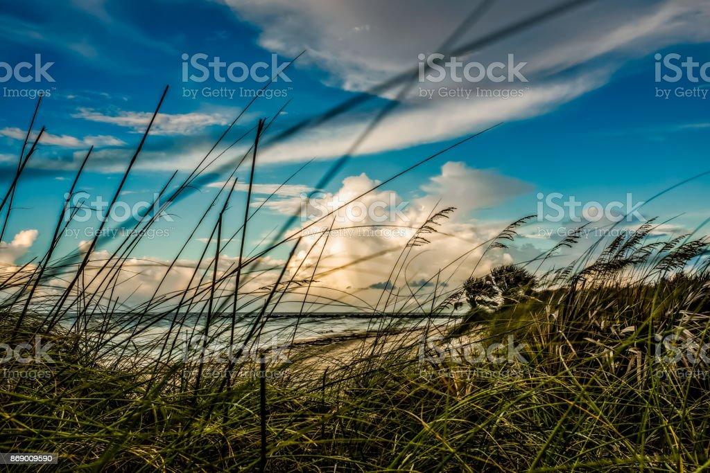 The Gulf Coast stock photo