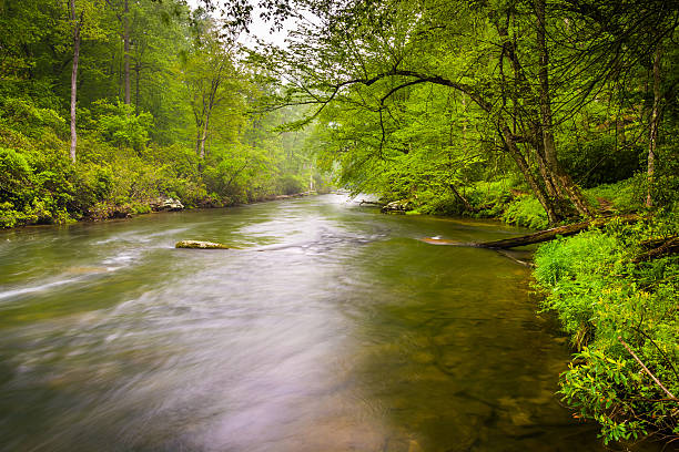 The Gunpowder River near Prettyboy Reservoir in Baltimore County stock photo