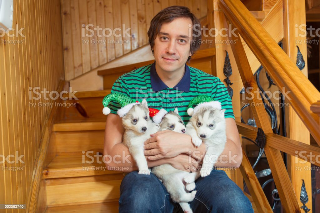 The guy holding the puppies breed Siberian Husky. royalty-free stock photo