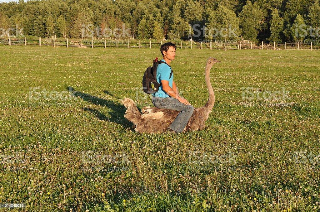 El chico con la mochila se encuentra en avestruz - foto de stock