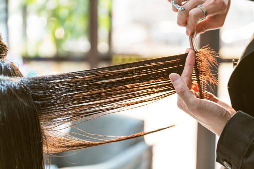理髮師剪掉頭髮 照片檔及更多 上半身像 照片