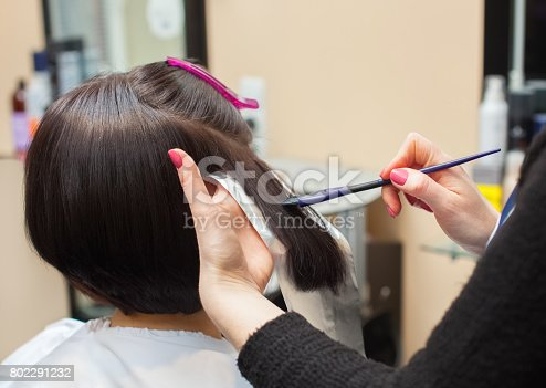 istock The hairdresser paints the woman's hair in a dark color, apply the paint to her hair 802291232