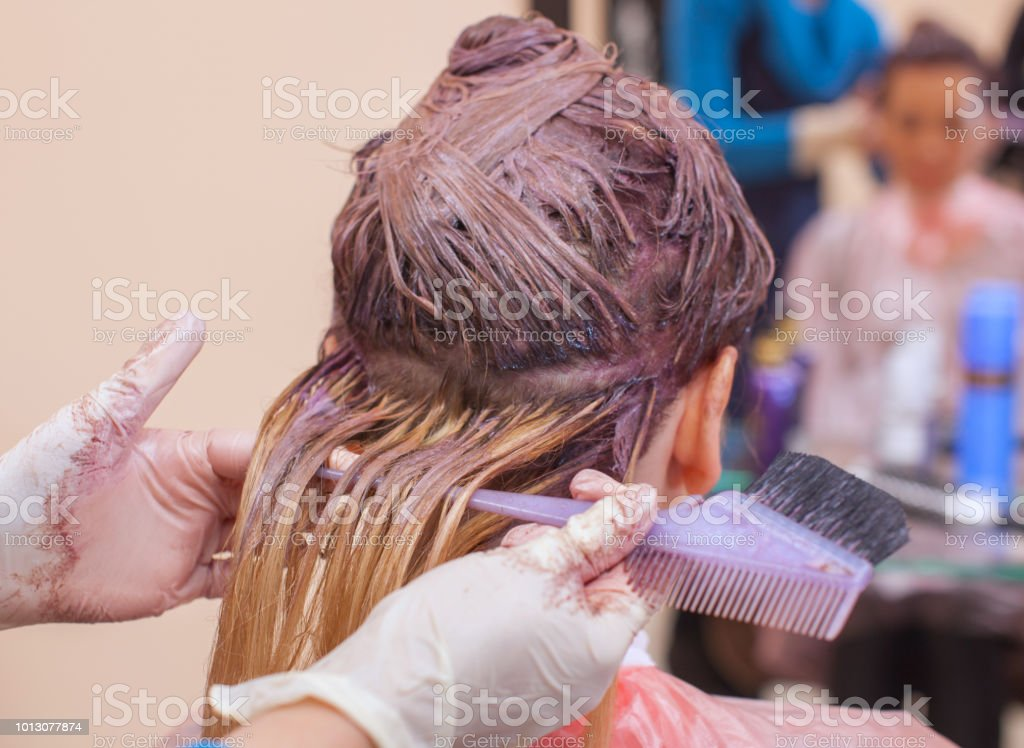 The hairdresser paints the woman's hair in white, apply the paint to her hair in the beauty salon. stock photo