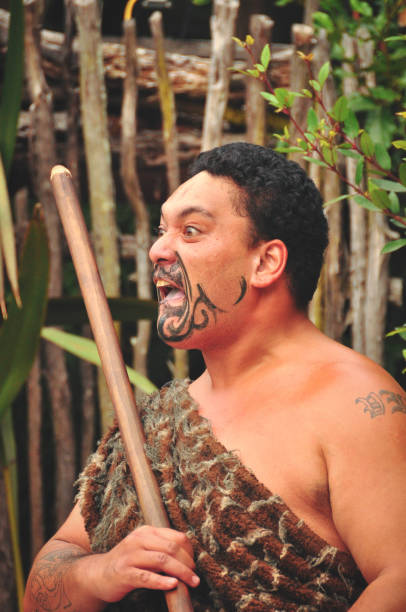 the haka - maori stock photos and pictures