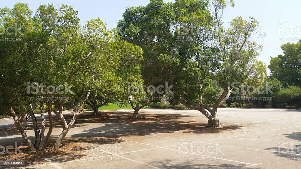 the Hamat Gader Spa site stock photo
