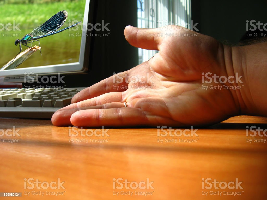 The hand of the person near a computer stock photo