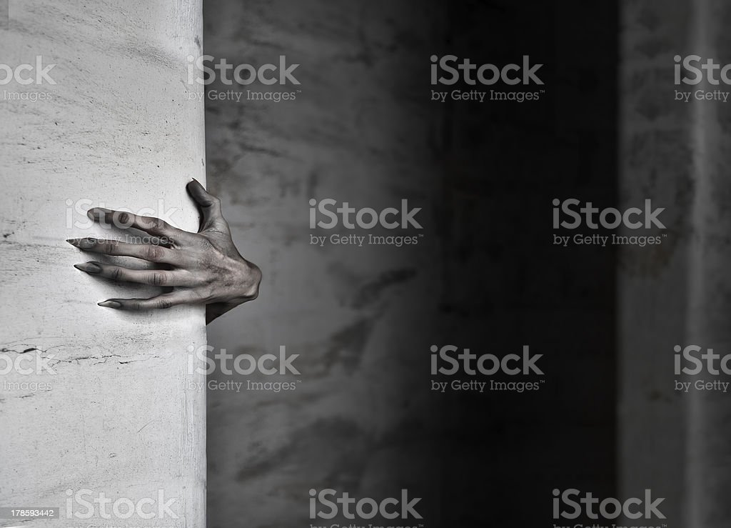 The Hand stock photo