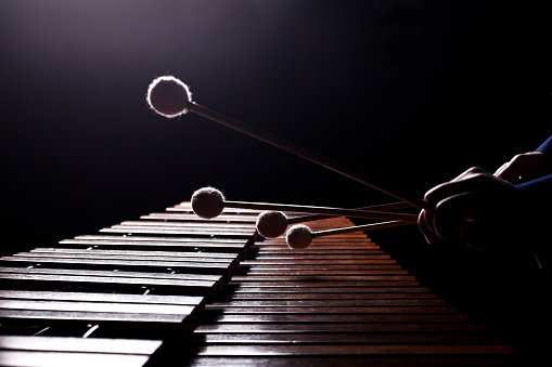The hands of a musician playing the marimba