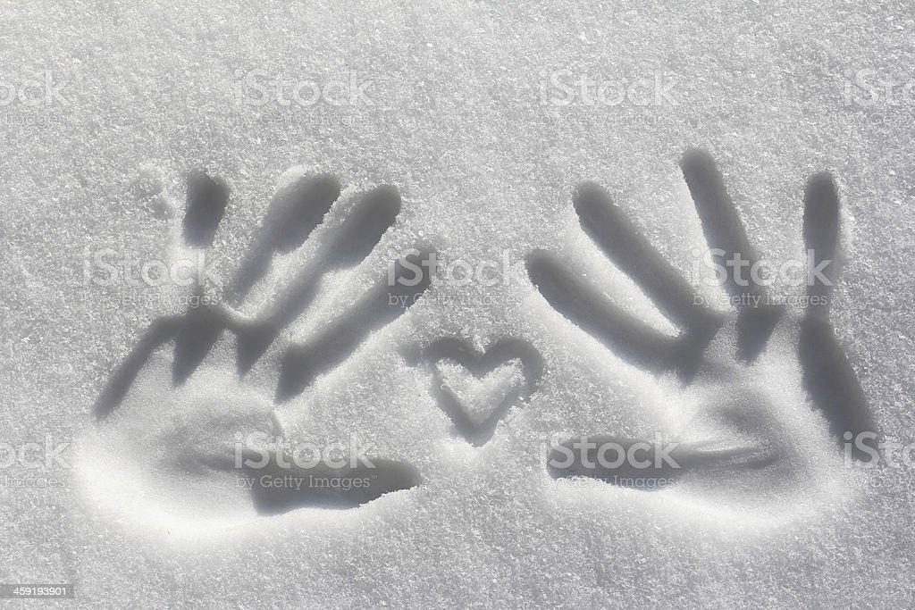 the hands stock photo