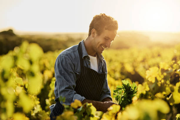 the happiest moments are made on a farm - one young man only stock photos and pictures