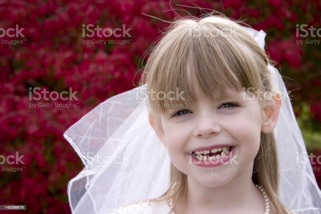 The Happy Bride royalty-free stock photo