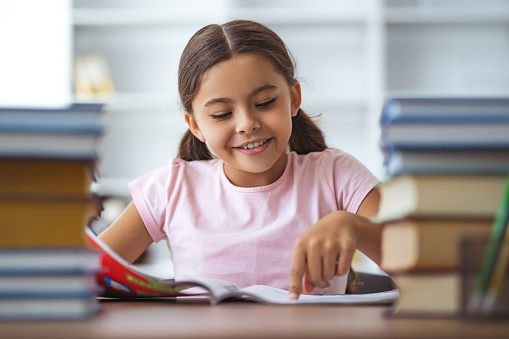 The happy schoolgirl sitting at the desk with books