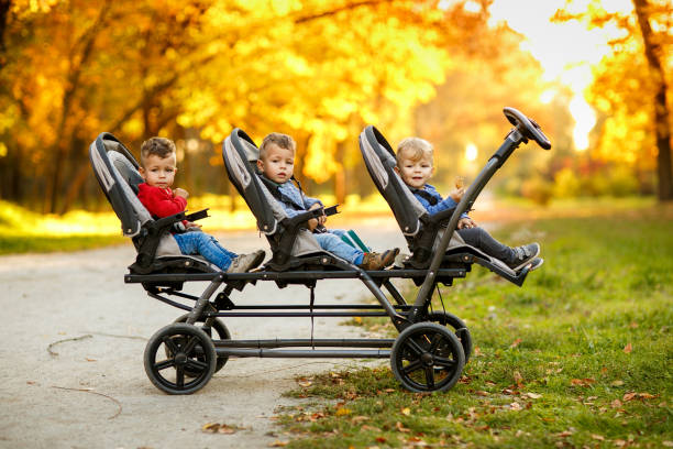 the happy triplets sit in a  baby stroller and eat cookies at autumn par - triplets stock photos and pictures