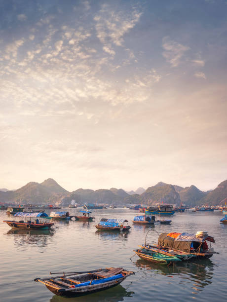 The Harbour On Cat Ba Island In Halong Bay, Vietnam stock photo