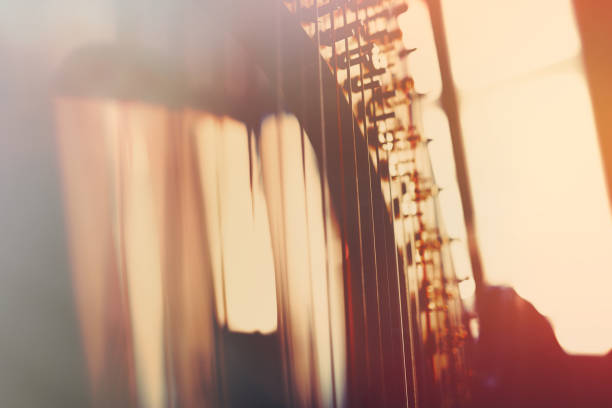 the harp in concert - harpist stock photos and pictures