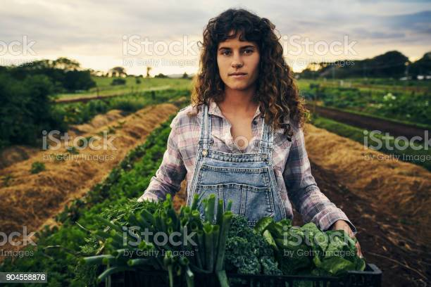 The harvest is good picture id904558876?b=1&k=6&m=904558876&s=612x612&h=lrjydgczbo6azf1hncfpbqdi7ryqrkw7j4rztpud47i=