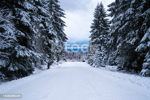 The Harz in winter with snow.