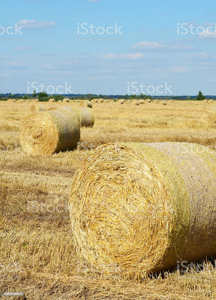 The haystack against the sky. royalty-free stock photo