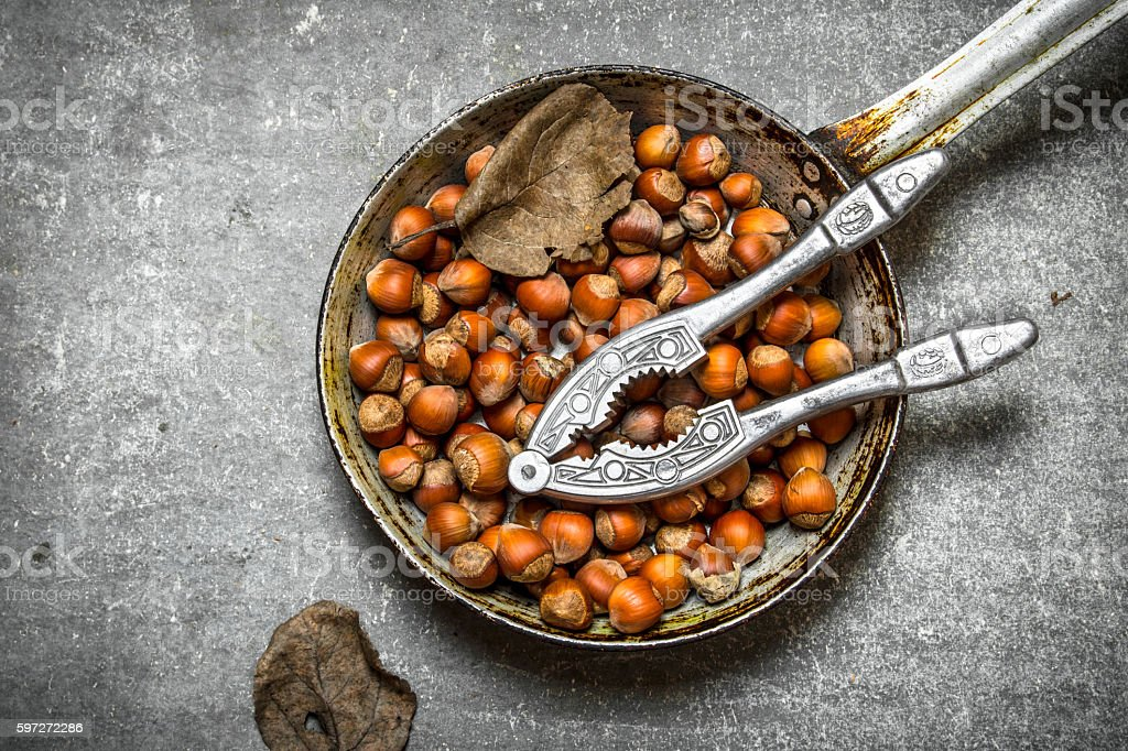 The hazelnuts in an old pan. royalty-free stock photo